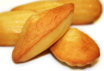 Madeleines source google images